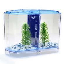 Fighting Betta Fish Tank Kit Aquarium Fish Tank Twin Bow Frpnt Tank