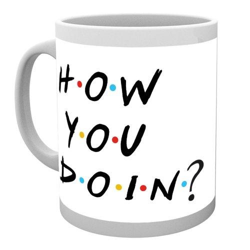 Friends How You Doin? Mug