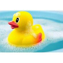 Mini Rubber Ducky Bath Toys (10-Pack)