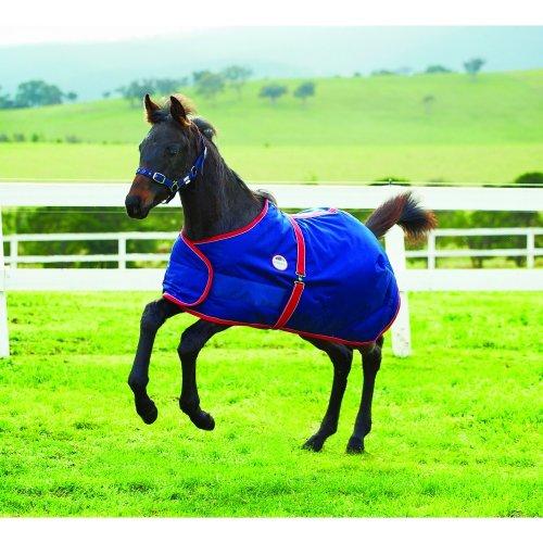 Weatherbeeta 1200d Foal Standard Neck Rug