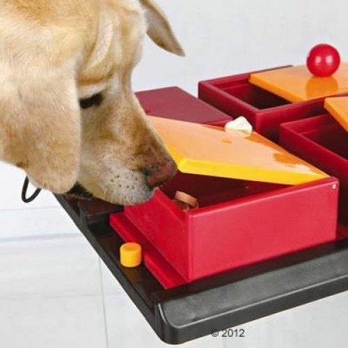 Dog Interactive Activity Boxes Toy FREE Treats