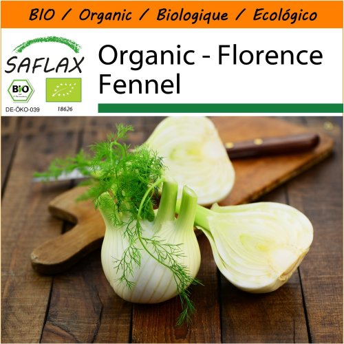 SAFLAX Garden in the Bag - Organic - Florence Fennel - 100 certified organic seeds  - Foeniculum