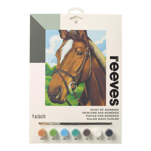 Reeves Painting By Numbers-Horse Head