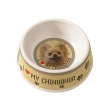 Long Haired Chihuahua Dog Bowl