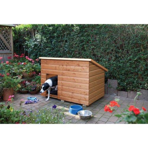 Large dog-kennel