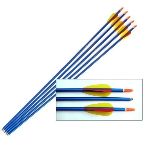 "Blue Aluminium Target Arrows - 30"" Long - Set of 5"