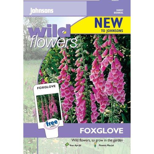 Johnsons Seeds - Pictorial Pack - Flower - Wildflower Foxglove - 2000 Seeds