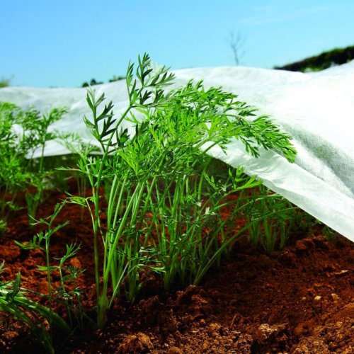 Nonwoven Crop & Plant Cover - Frost Protection - Insect Netting - 3.2m X 10m