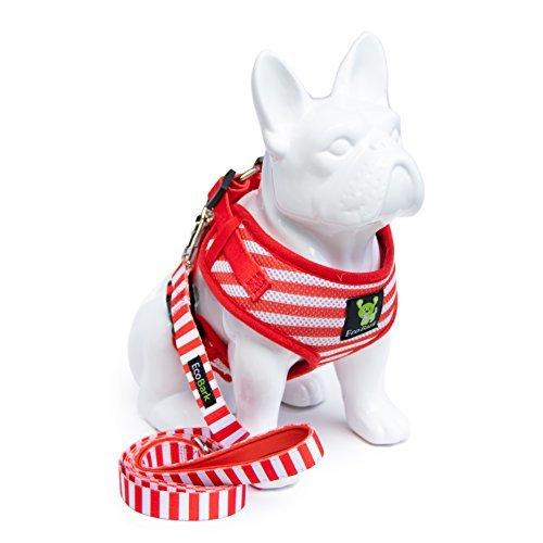 EcoBark Neck Adjustable Dog Harness & Leash Combo