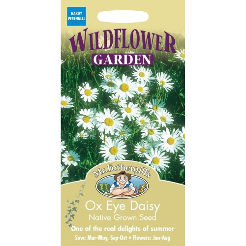 Mr Fothergills - Pictorial Packet - Wildflower - Ox Eye Daisy - 750 Seeds