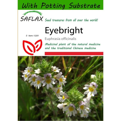 Saflax  - Eyebright - Euphrasia Officinalis - 200 Seeds - with Potting Substrate for Better Cultivation