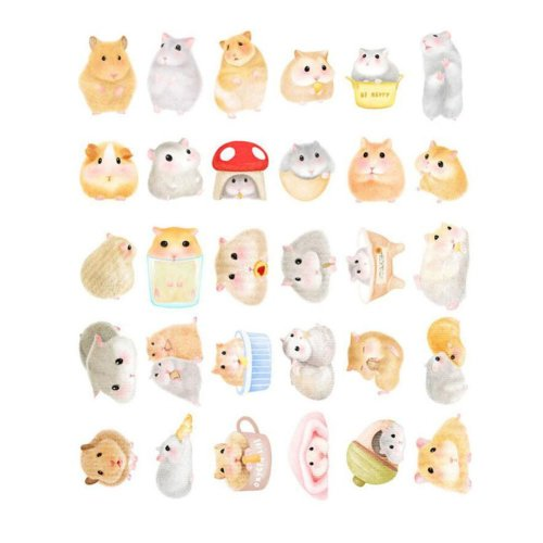 Animal Pattern Postcards Pack of 30 Cute Hamster Shape