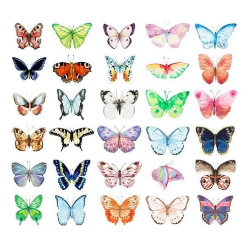 Beautiful Butterfly Shape Set of 30 Postcards Post Card