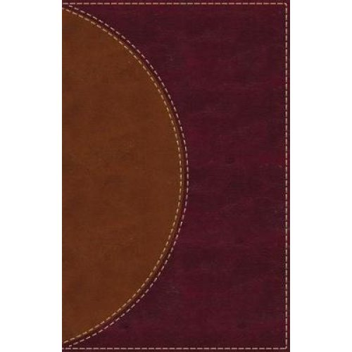 Amplified Reading Bible, Leathersoft, Brown, Indexed