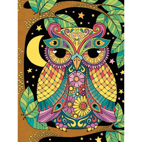 "Pencil Works Color By Number Kit 9""X12""-Night Owl"