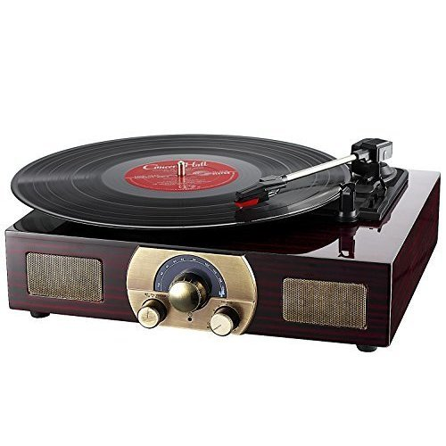 Vinyl Turntables, LuguLake Stereo 3-Speed Turntable with Built-In Bluetooth Speakers, Record Player, FM Radio and RCA Output, Vintage Phonograph...