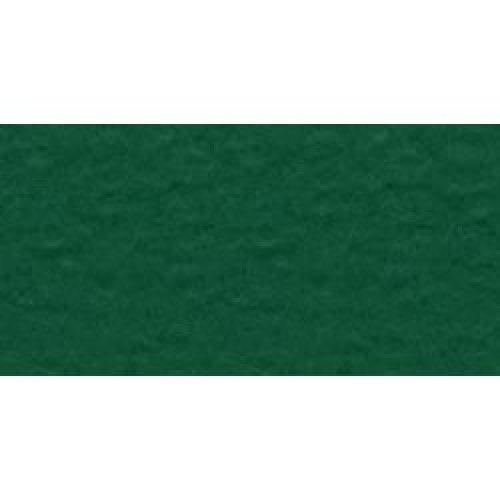 """Bazzill Mono Cardstock 12""""X12""""-Classic Green/Canvas"""