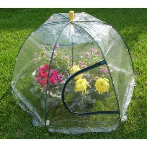 85cm Easy Up Greenhouse / Green House Standard