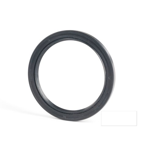 5x16x6mm Oil Seal Nitrile Double Lip With Spring 10 Pack