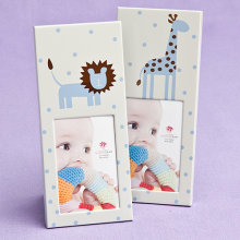 Assortment of 2 Lion and Giraffe Baby Photo Frames
