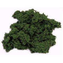 Javis Hedge Foliage - D Green